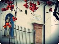 The Agriturismo - Il Galeotto